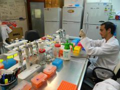 Laboratorio de Virología Molecular Salto